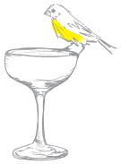 cocktail bird