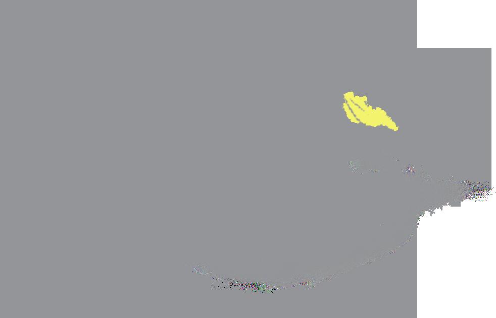 TGC BIRD+PLATE Final Logo